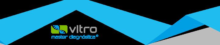 Vitro SA